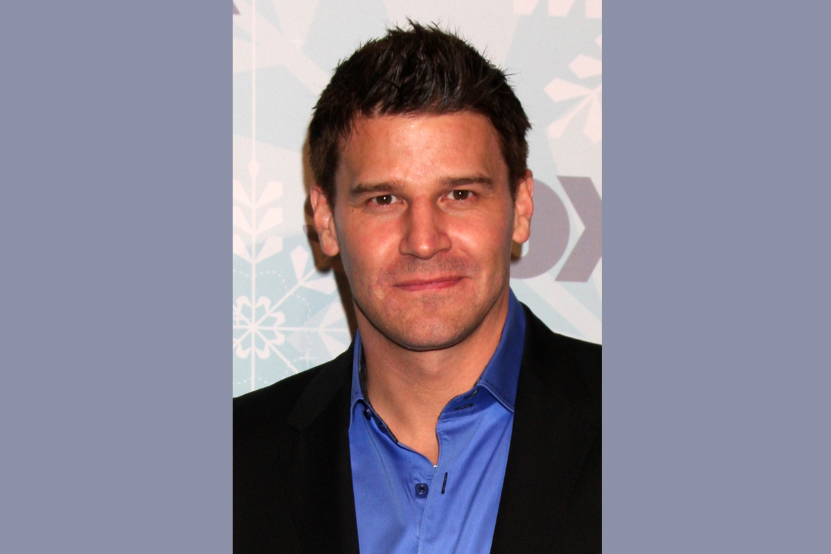 Comm Grad Spotlight: David Boreanaz