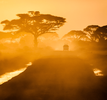 SUV on African Safari